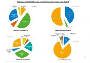 Compte administratif du budget assainissement gestion directe, en 2015